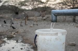 Wasser bedeutet Leben für Mensch und Tier. Doch gerade in den ländlichen Regionen der Welt ist das Wasser knapp. Das gefährdet die Ernten und die Ernährungssicherheit. Foto: Singhal_MISEREOR
